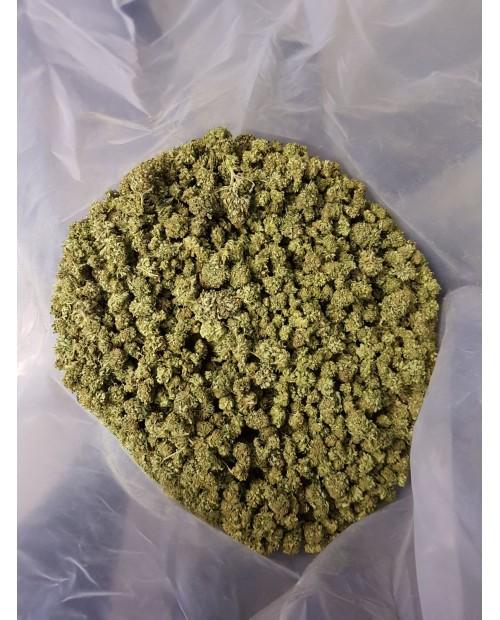 CANAPA SATIVA L. -CANDY KUSH,buste sigillate da 100 gr.