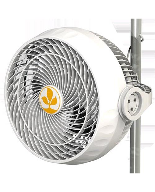 SECRET JARDIN - MONKEY FAN 30W