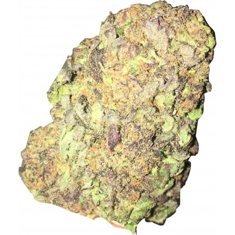 PURPLE HERMOSA -USA FLOWER - 1 GR