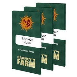 BARNEY'S FARM - BAD AZZ KUSH - 5 SEEDS