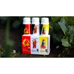 LINE HERBA VERMIBOX - THE COMPLETE KIT FOR GROWERS 250ML