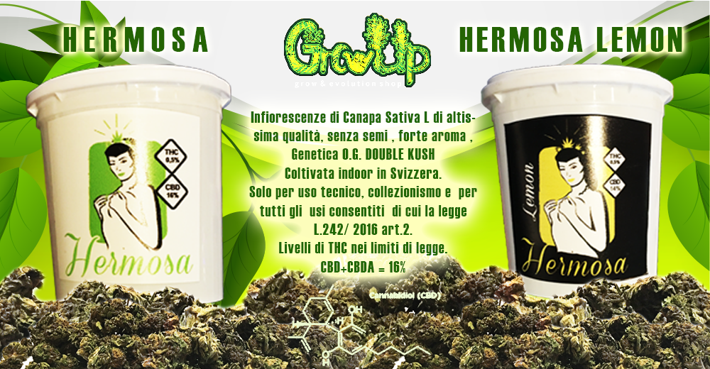 Hermosa Erba Light CBD